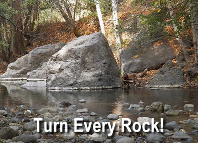 Turn Every Rock